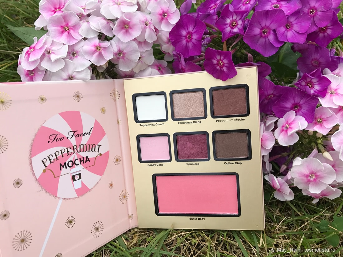 Too Faced Peppermint Mocha палетка теней и румян
